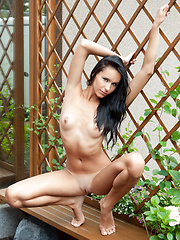 Diana is stunning with her scrumptiously tanned body, alluring green eyes, and erotic, sultry poses. - Pics