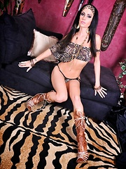 Tiger Assault Pics - Jessica Jaymes